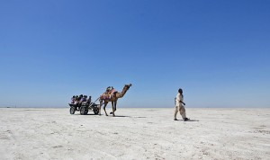 Rann of Kutch Packaged Tour
